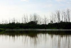 Garama_Wetland_Village_01.jpg