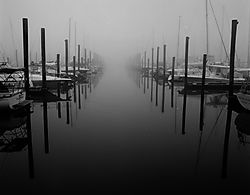 Ghost_Marina.jpg