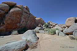 Giant-Rock-in-Joshua-Tree-National-Park_PPW.jpg