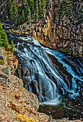 Gibbons_Falls_-_Yellowstone.jpg