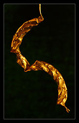 Golden-2b.jpg