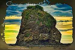 Gorilla_Head_Rock.jpg