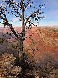 Grand_Canyon_8.jpg