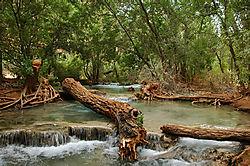 Grand_Canyon_Havasu_River-1-1.jpg