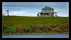 Green-House-b.jpg
