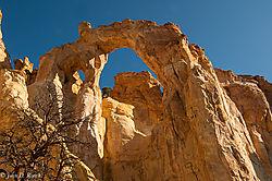 Grosvenor_s_Arch_Utah--Nikonians.jpg