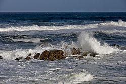 HMB_Surf_San_Gregorio_DSC_0157_JPG_1_of_1_.jpg