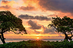 Hawaiian_Sunrise-4844.jpg