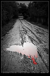 Here_s_where_I_left_my_heart.jpg