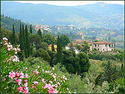 Hills_near_Florence_Italy.JPG