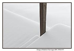 Homage_To_Mondrian_1971.jpg