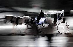 Horse_carriage_17x11_2.jpg