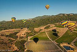 Hot_Air_Balloons_over_Napa_Valley_2Vineyards-Nikonians.jpg