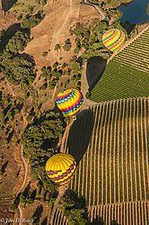 Hot_Air_Balloons_over_Napa_Valley_Vineyards-Nikonians.jpg