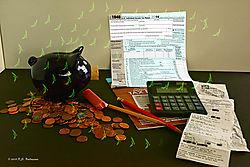 I-hate-Taxes-PPflying-dollars.jpg
