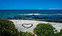I_LOVE_HAWAII.JPG