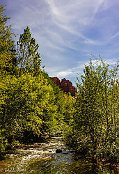 Images_around_Cathedral_Rock-14.jpg