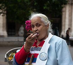 Isabel_street_sweeper_old_Havana-1402.jpg