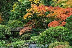 JapaneseGarden03.jpg