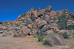 Jashua-Tree-Rock-Pile_1-PPW.jpg