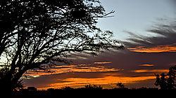 Kalahari_09_003-2.jpg