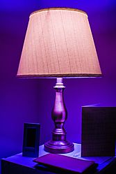 LAMP_2337.jpg