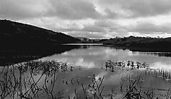 Lake-BW.jpg
