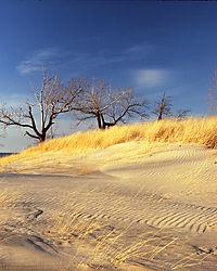 Lake-Michigan---Holland.jpg