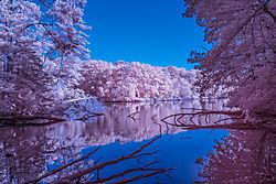 Lake_Maury_5.jpg