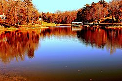 Lake_Wylie_Copperhead_Island.jpg