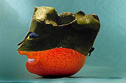 Lemon-Disguised-as-an-Ancient-Greek-Orange.jpg