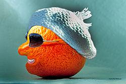 Lemon-Disguised-as-an-Orange-2.jpg