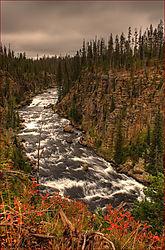 Lewis_River.jpg