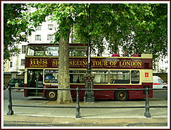 London_Sightseeing_Bus.jpg