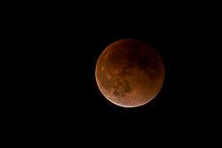 LunarEclipse-3092.jpg