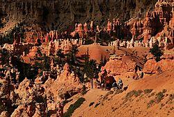 M3J_3808_-_Bryce_Canyon_-_June_2009.jpg