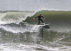 MDS0698Surfer.jpg