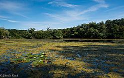 Mallard_Lake_2.jpg