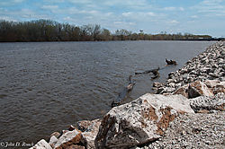 Mississippi_River_at_Rock_Island_Illinois.jpg