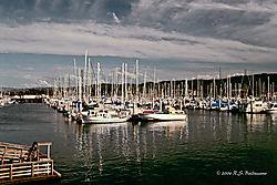 Monterey-fishermans-Warf-Ver-3-PPW.jpg