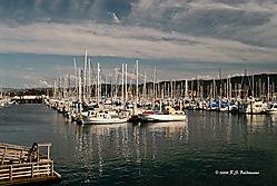Monterey-fishermans-Warf-ver-4--3version-blend.jpg