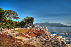 Monterey_Coast_4.jpg