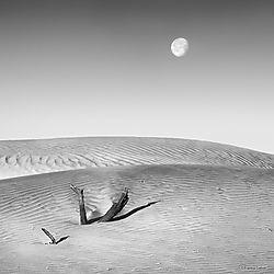 Moonset_Death_Valley_copy.jpg