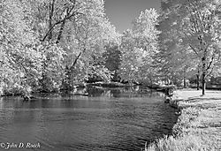 Morning_along_the_River_Mono_IR_.jpg