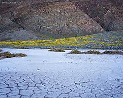 Mudflat_Death_Valley.jpg