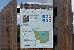 MunsonPond-3405.jpg