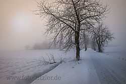 N61_1260-Bexs.jpg