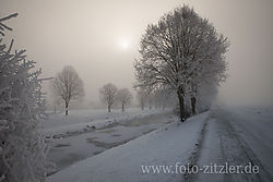 N61_1302-Bexs.jpg
