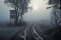 N61_1806-Bexs.jpg