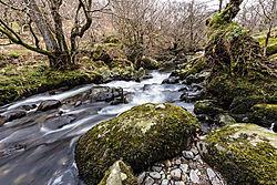Nikonians_Waterfall.jpg